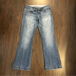 Gap 1969 Blue Jeans Women's 27/4A Long & Lean